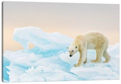 On Ice Canvas Art Print