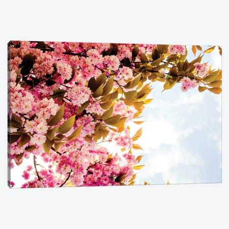 London Blossom Canvas Print #RAB103} by Ruby and B Art Print