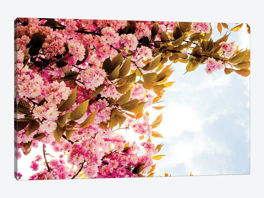 London Blossom by Ruby and B 1-piece Canvas Art Print