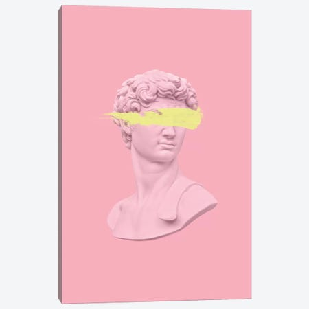 David In Pink Canvas Print #RAB179} by Ruby and B Canvas Wall Art