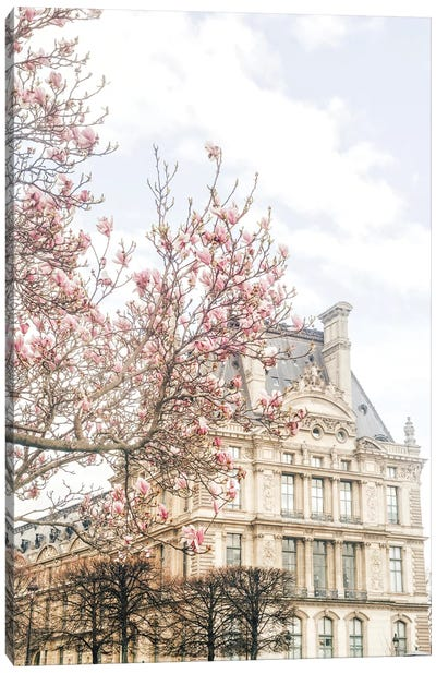Paris Magnolia Canvas Art Print