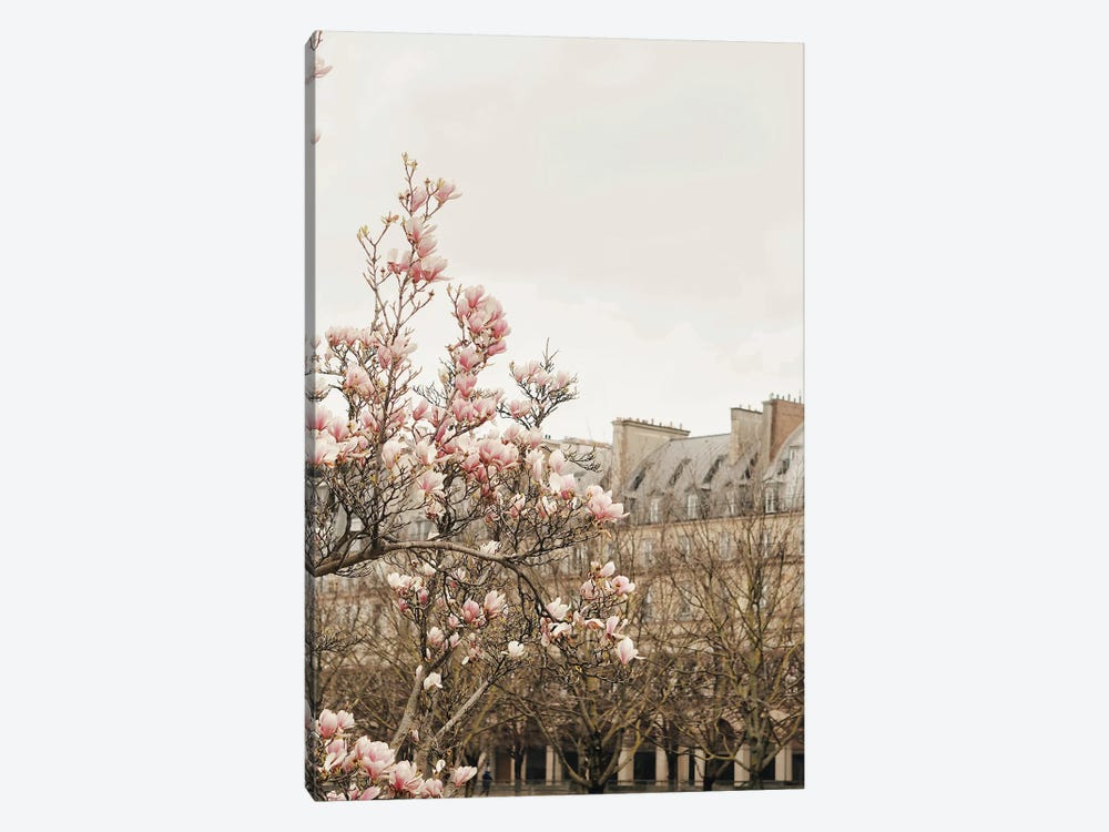 Paris Spring View by Ruby and B 1-piece Canvas Artwork