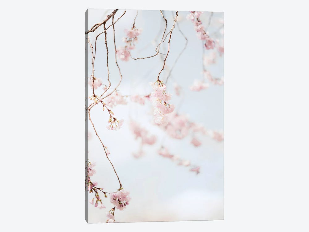 Blooms by Ruby and B 1-piece Canvas Print