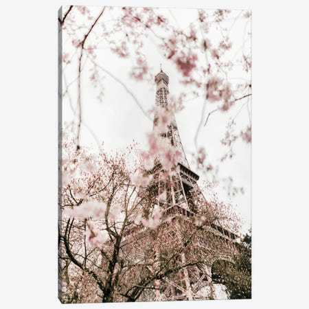 Paris In Bloom Canvas Print #RAB226} by Ruby and B Canvas Art Print