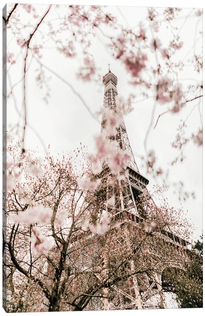 Paris In Bloom Canvas Art Print