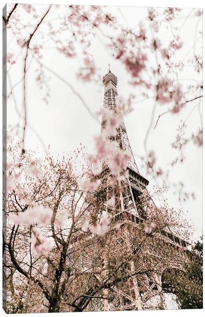 Paris In Bloom Canvas Art Print