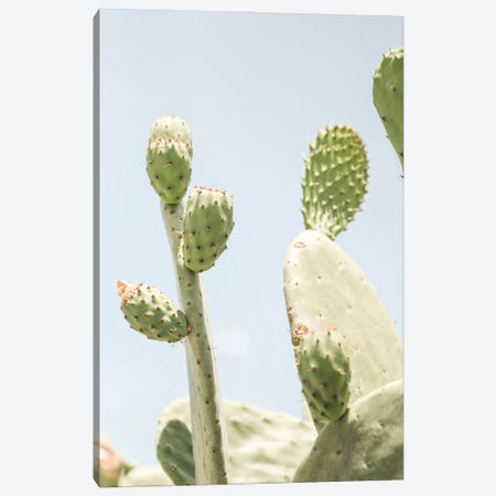 Cactus V Canvas Print #RAB245} by Ruby and B Canvas Print