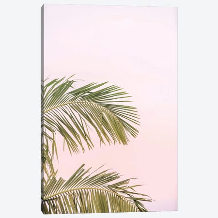 Pink Palms Canvas Print #RAB257} by Ruby and B Canvas Art
