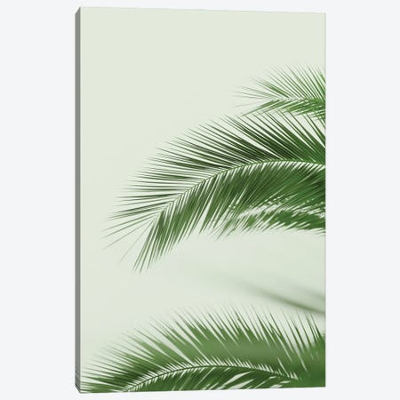 Mint Palms Canvas Print #RAB261} by Ruby and B Canvas Artwork