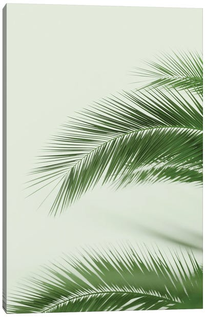 Mint Palms Canvas Art Print