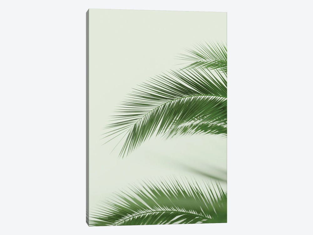 Mint Palms by Ruby and B 1-piece Canvas Print