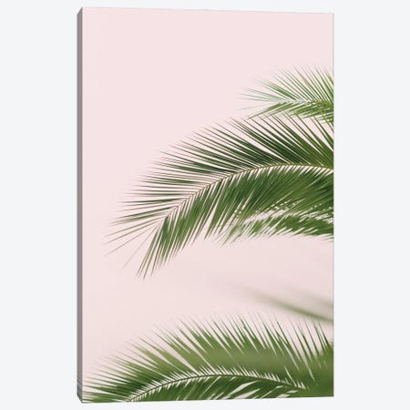 Pink And Green Palm Tree Canvas Print #RAB264} by Ruby and B Art Print