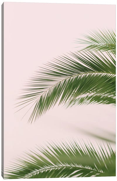 Pink And Green Palm Tree Canvas Art Print