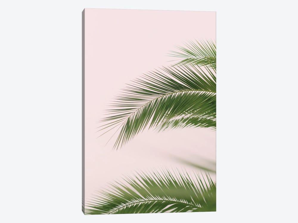 Pink And Green Palm Tree by Ruby and B 1-piece Canvas Art