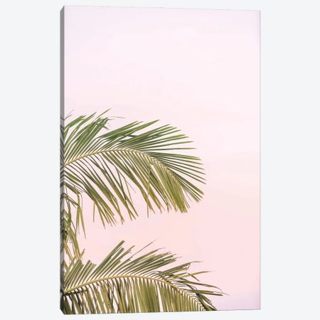 Sunset Palm Leaves Canvas Print #RAB265} by Ruby and B Canvas Art Print