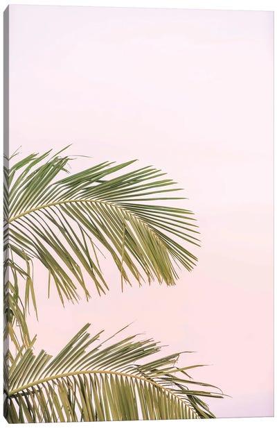 Sunset Palm Leaves Canvas Art Print