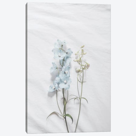 Minimalist Blue Flower Canvas Print #RAB281} by Ruby and B Canvas Artwork