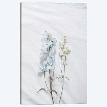 Minimalist Blue Flower Canvas Print #RAB281} by Ruby and B Canvas Artwork