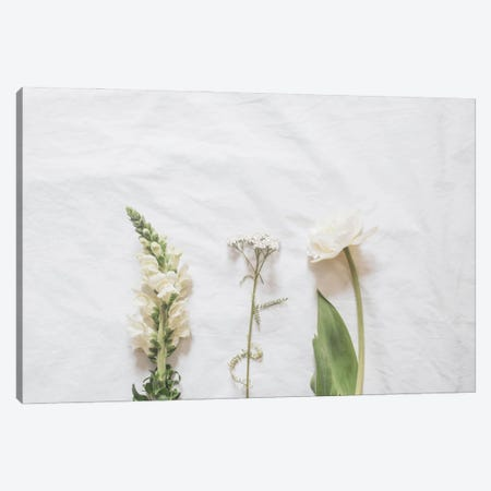 White Flowers Canvas Print #RAB283} by Ruby and B Canvas Art