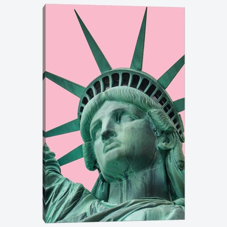 Liberty Pink Canvas Print #RAB31} by Ruby and B Canvas Art Print