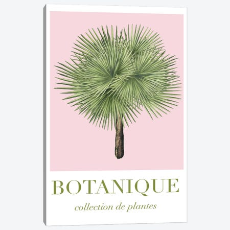 Botanical Collection Canvas Print #RAB424} by Ruby and B Art Print