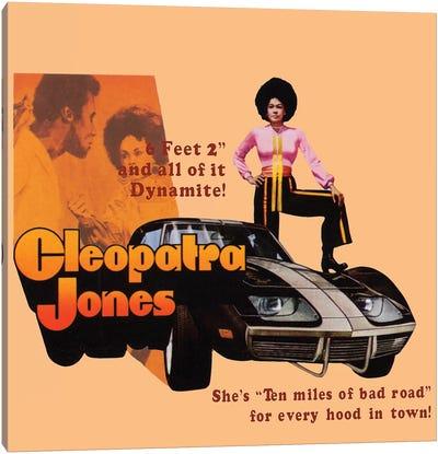 Cleopatra Jones Promotional Poster Canvas Art Print