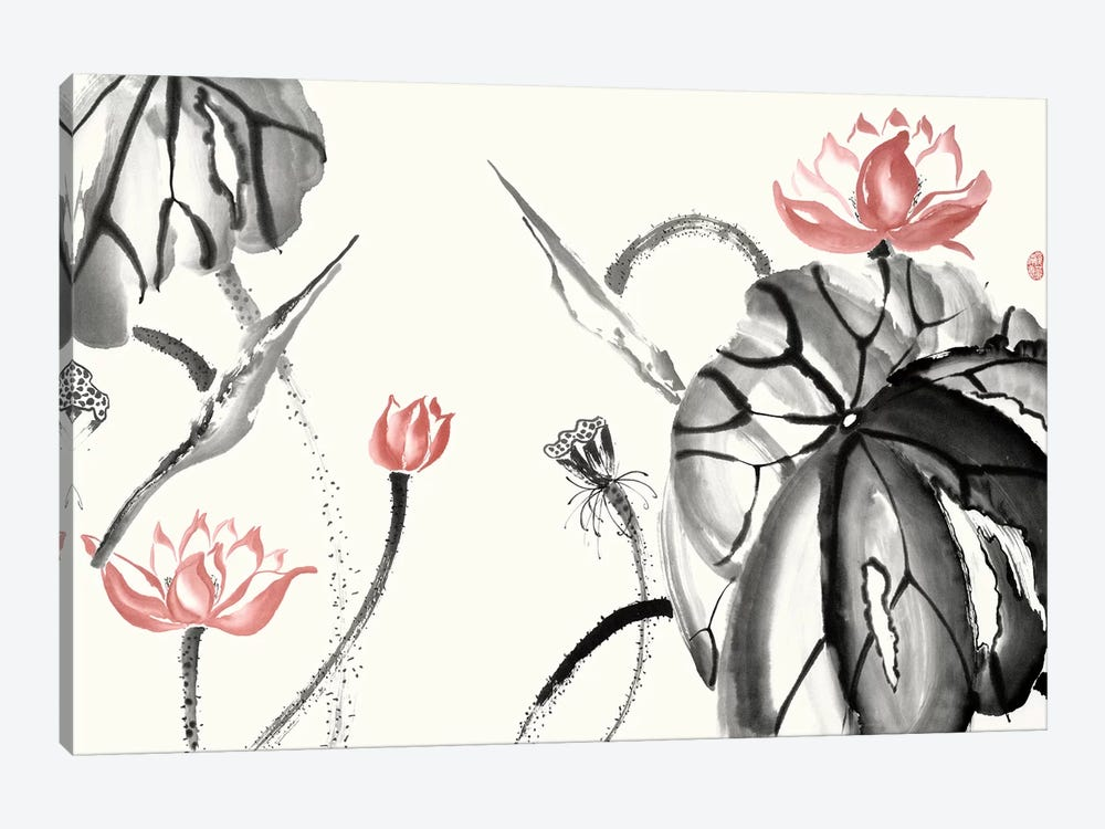 Lotus Study with Coral II by Nan Rae 1-piece Canvas Artwork