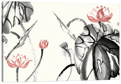 Lotus Study with Coral II Canvas Art Print