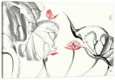 Lotus Study with Coral III Canvas Art Print