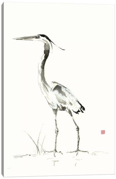 Evening Watch II Canvas Art Print