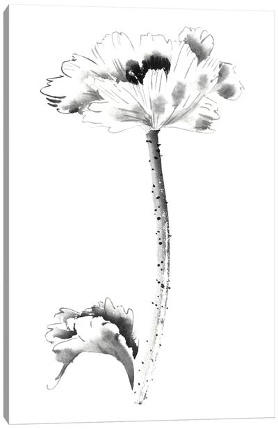 Ink Poppy Canvas Art Print