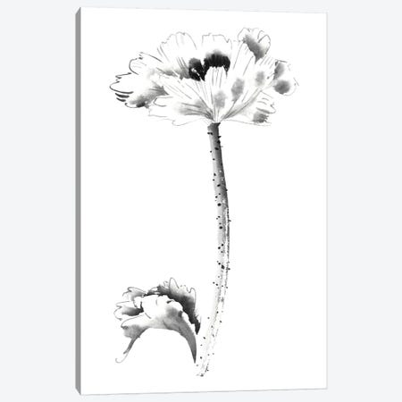 Ink Poppy 3-Piece Canvas #RAE14} by Nan Rae Canvas Print