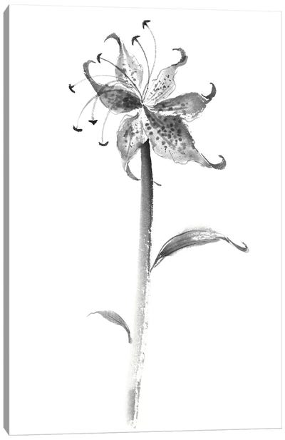 Ink Tiger Lily Canvas Art Print
