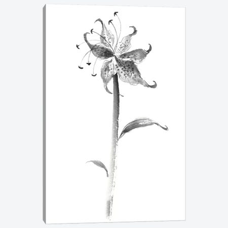 Ink Tiger Lily 3-Piece Canvas #RAE15} by Nan Rae Art Print