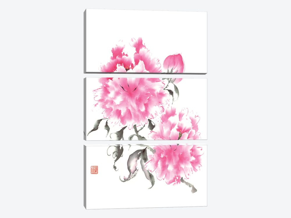 Peony Blossoms I by Nan Rae 3-piece Canvas Artwork