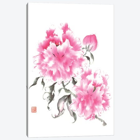 Peony Blossoms I 3-Piece Canvas #RAE1} by Nan Rae Canvas Art Print