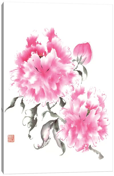 Peony Blossoms I Canvas Art Print