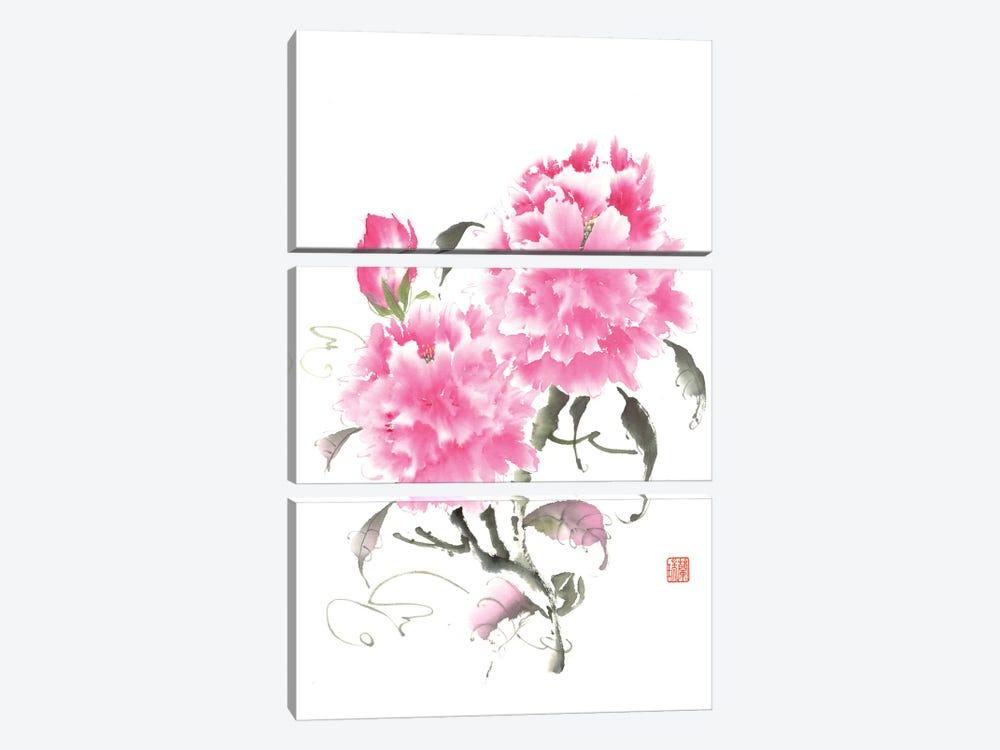 Peony Blossoms II by Nan Rae 3-piece Canvas Print