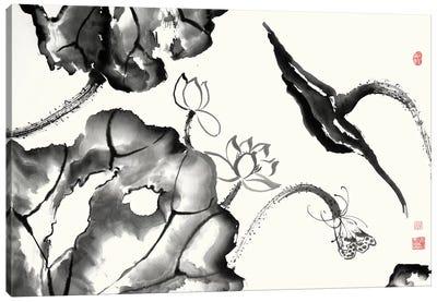 Lotus Study II Canvas Art Print