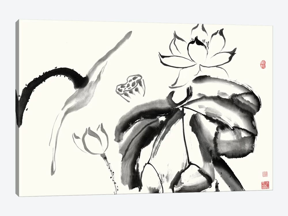 Lotus Study III by Nan Rae 1-piece Canvas Wall Art