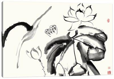 Lotus Study III Canvas Art Print