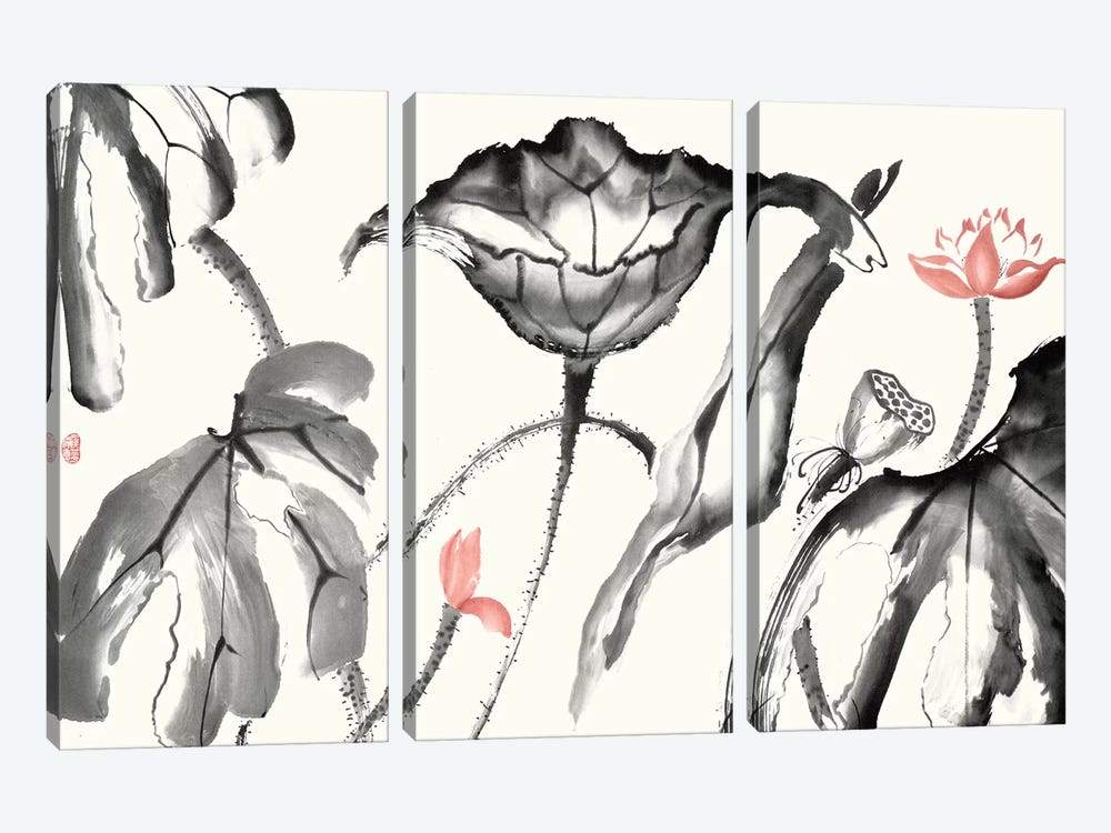 Lotus Study with Coral I by Nan Rae 3-piece Canvas Wall Art