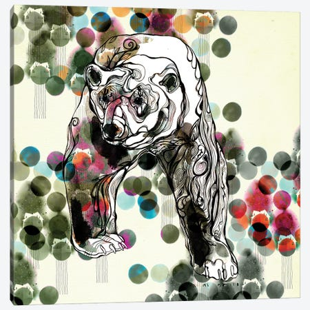 Bear Canvas Print #RAN62} by Randi Antonsen Canvas Wall Art
