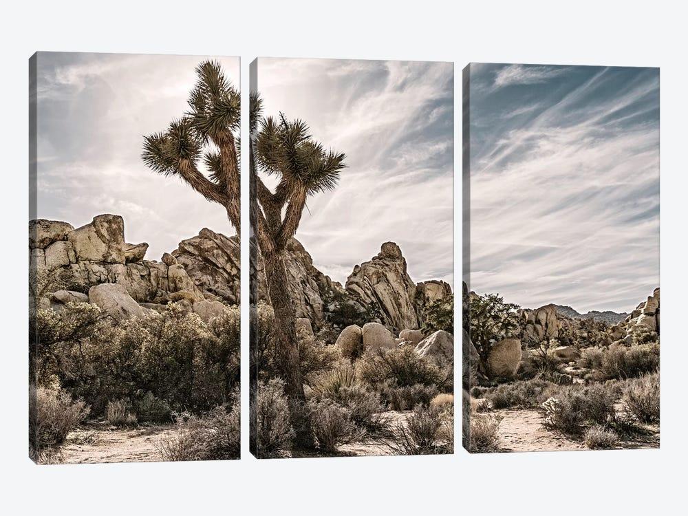 Joshua Tree Views VIII by Rachel Perry 3-piece Canvas Art Print