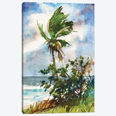 Ocean Breeze Canvas Print #RAR2} by Richard A. Rodgers Art Print