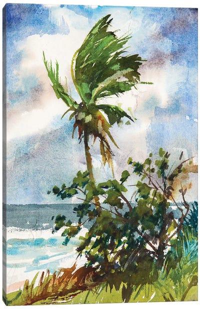 Ocean Breeze Canvas Print #RAR2