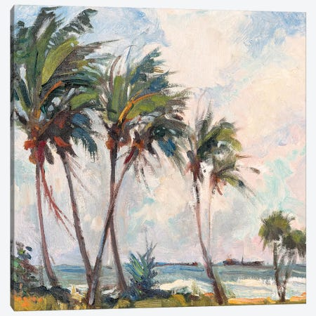 Six Palms Canvas Print #RAR3} by Richard A. Rodgers Art Print