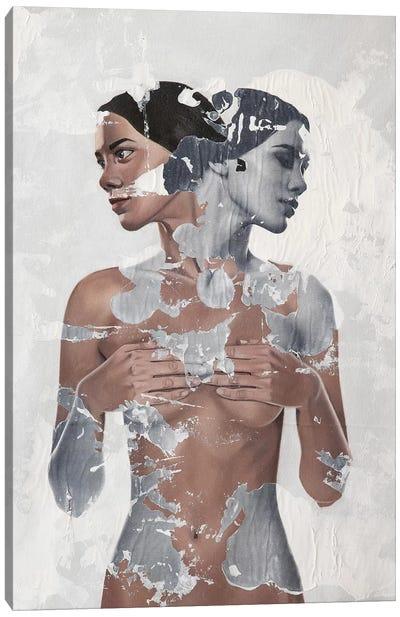 Symmetriarum Canvas Art Print