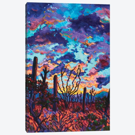 Desert Dusk Canvas Print #RBC14} by Rebecca Baldwin Art Print