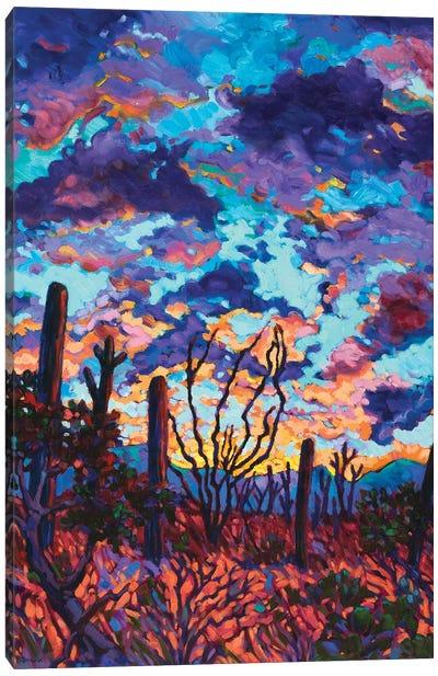 Desert Dusk Canvas Art Print